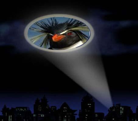 PenguinSignal_edited-1.jpg